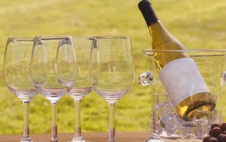 Выставка-дегустация вин Южной Африки в Москве