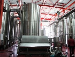 ФАС разрешила Beluga Group приобрести винодельческое хозяйство «Вилла Романов» в Тамани