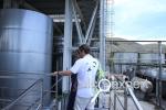 Завод марочных вин Коктебель: между прошлым и будущим. ФОТО