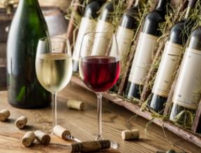 Для улучшения экологической обстановки объединились винодельни Каталонии и Калифорнии