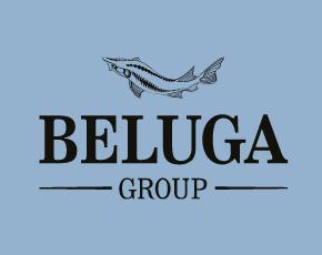 BELUGA GROUP объявила финансовые результаты за 2018 год