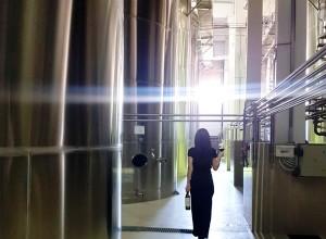 Фанагория реконструирует винные хранилища